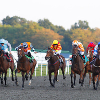 Kempton 21st September