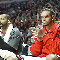 24 March 2012: Chicago Bulls power forward Carlos Boozer (5) and Chicago Bulls center Joakim Noah (13) cheer their teammate during the Chicago Bulls 102-101 victory in overtime over the Toronto Raptors at the United Center, Chicago, Illinois, USA.