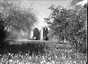 Views of Birr Castle & Observatory Ruins .02/04/1958