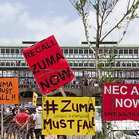 Zuma Must Fall March Dec 15 2015