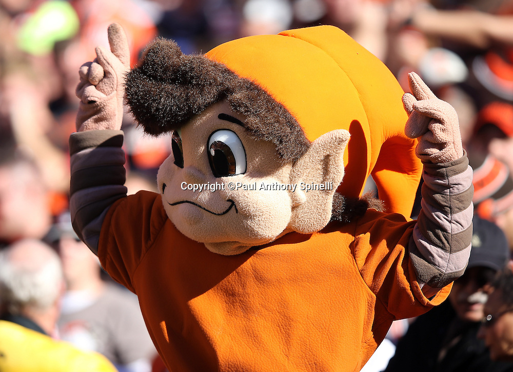 "The Cleveland Browns mascot ""Brownie the Elf"" signals touchdown with his arms raised during the 2015 week 8 regular season NFL football game against the Arizona Cardinals on Sunday, Nov. 1, 2015 in Cleveland. The Cardinals won the game 34-20. (©Paul Anthony Spinelli)"