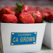 Strawberries picked from the fields of Oxnard, California.