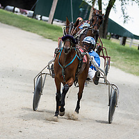 Downstate Classic Harness Racing at Macon County Fairgrounds, Decatur, Illinois, June 9, 2013. Photo: George Strohl