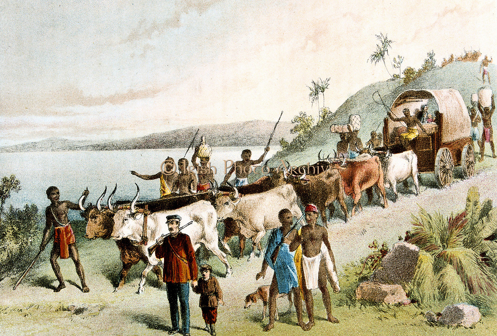 David Livingstone (1813-1873) Scottish missionary and African explorer.  Centre front, holding child's hand, with attendants and ox wagon arriving at Lake Ngami. From 'The Life and Explorations of David Livingstone' (London c1878). Chromolithograph.