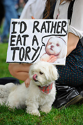 "© Licensed to London News Pictures. 29/05/2017. London UK. A demonstrator and her dog join an ""Anti-Hunting March"" in central London, marching from Cavendish Square to outside Downing Street.  Protesters are demanding that the ban on fox hunting remains, contrary to reported comments by Theresa May, Prime Minister, that the 2004 Hunting Act could be repealed after the General Election.<br />  Photo credit : Stephen Chung/LNP"