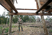 A park ranger inspects a house being illegally built within the boundaries of the nature reserve. The forest rangers are employed by the Ministry of Environment but sponsored by Flora and Fauna International who pays them 75% of their salary and provides training and accommodation. They undertake regular patrols in to the Samkos Wildlife Sancturary which is part of the Cardamom Mountains Nature Reserve looking for illegal activites such as logging, poaching, land encroachment and the production of the illegal substance sassafras oil. The Cardamom Mountains and surrounding forests is the largest and most pristine area of intact forest in SE Asia. Covering an area of 2.5 million acres it became one of the last strong holds of a retreating Khmer Rouge. Their presence helped preserve the forest as no-one dared to venture inside. But with the Khmer Rouge gone, it faces new dangers from poachers, loggers and illegal drug factories. In charge of protecting this vast forest are a handful of rangers who's job it is to track down and arrest those who are helping to destroy this delicate habitat.