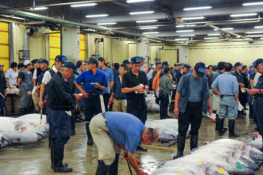 Tokyo fish market, Tokyo, Japan, 11/14/2011