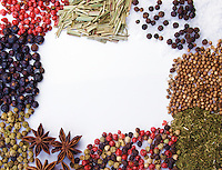 Frame of diferent spices on white background