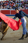 Professional bullfighter Oscar Higares teases a bull during the annual village festival of San Juan in Campos del Rio, near Murcia in southern Spain.  (OscarHigares is featured in the book What I Eat: Around the World in 80 Diets.) After a dozen more passes, he kills the bull on his first attempt, eliciting a standing ovation from the crowd, which awards him the bull's ears and tail. Oscar and the bull spend just under 15 minutes together in the ring (an anxious period in which Oscar must control not only the objective dangers, but also his fear).  Each bullfight ends with the killing of the bull by the matador (bullfighter).MODEL RELEASED.