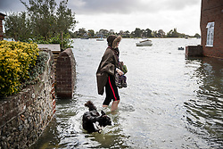 © Licensed to London News Pictures. 01/10/2019. Bosham, UK. A woman and her dog wade through seawater as high tide floods roads in the village of Bosham in West Sussex. Parts of the South are being affected by the aftermath of Hurricane Lorenzo with numerous flood warnings in place. Photo credit: Peter Macdiarmid/LNP