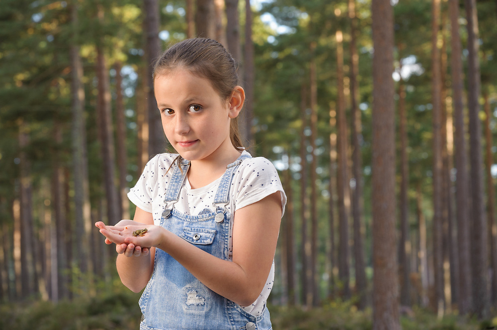 Holding a small frog, Torrieston, Aberdeenshire and Moray Forest District, Forestry Commission Scotland