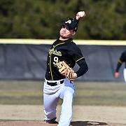 AIC Baseball