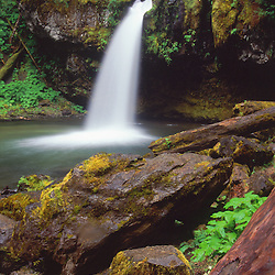Iron Creek Falls, Mt. St. Helens National Volcanic Monument, Washington, US