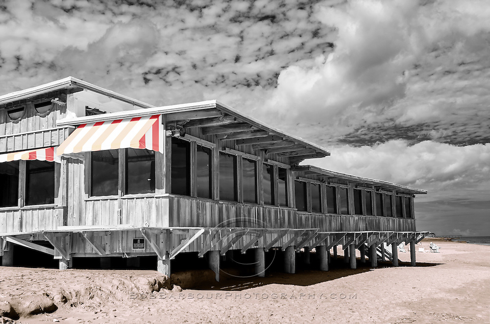 Infrared photo with color tone,<br />