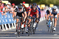 Arrival Sprint, BOASSON HAGEN Edvald (NOR) Dimension Data, winner, VAN AVERMAET Greg (BEL) during the 7th Tour of Oman 2016, Stage 5, Yiti (Al Sifah) - Ministry of Tourism (119,5Km) on February 20, 2016 - Photo Tim de Waele / DPPI