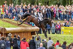 Klimke Ingrid, GER, Equistros Siena Just Do It<br /> Mondial du Lion - Le Lion d'Angers 2019<br /> © Hippo Foto - Stefan Lafrentz