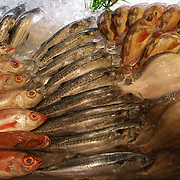 Fish for sale in the Lotte World shopping food hall, Seoul, South Korea. 22nd March 2012. Photo Tim Clayton