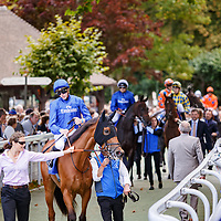 Sobetsu before winning Shadwell Prix de la Nonette Gr.2 in Deauville, 19/08/2017, photo: Zuzanna Lupa