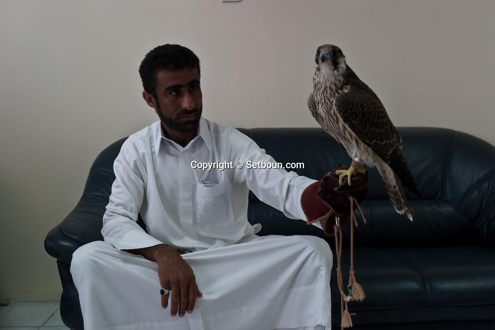 = falcon center hospital  Doha  QATAR /// clinique pour les faucons   Doha  QATAR +