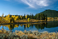 Autumn in Grand Teton National Park, WY