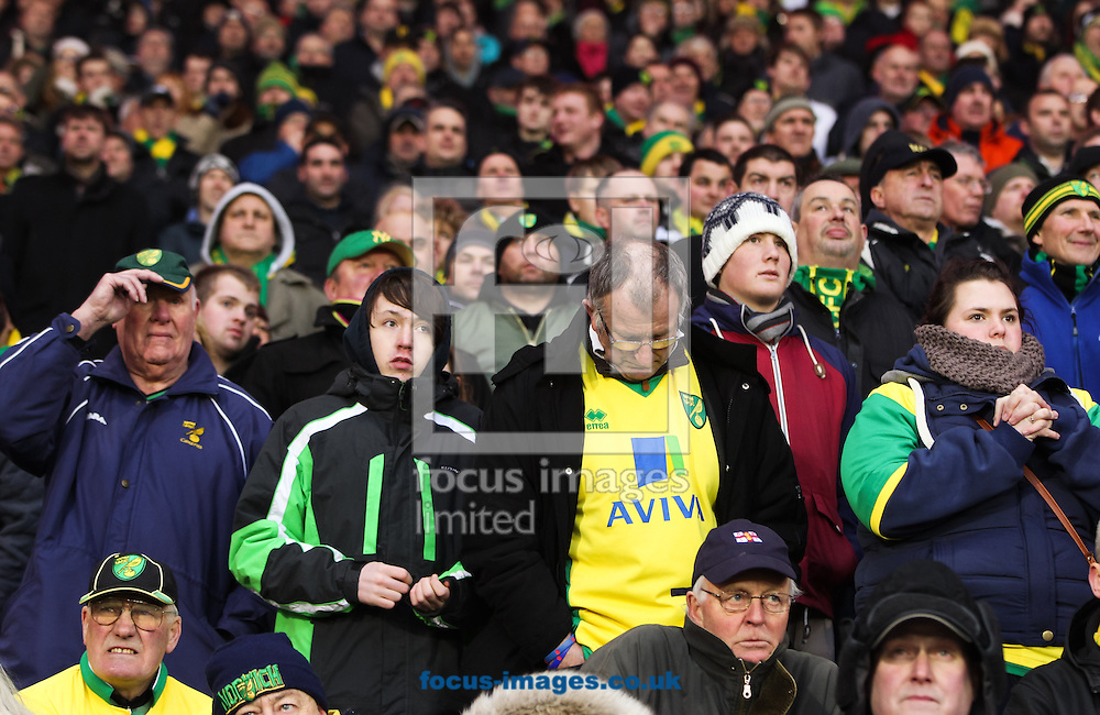 Picture by Tom Smith/Focus Images Ltd 07545141164<br /> 01/02/2014<br /> Norwich City fans looking nervous during the Barclays Premier League match at the Cardiff City Stadium, Cardiff.