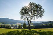 Landschaft, Lamer Winkel, Kleiner Osser, Bayerischer Wald, Bayern, Deutschland   landscape Lamer Winkel, Bavarian Forest, Bavaria, Germany