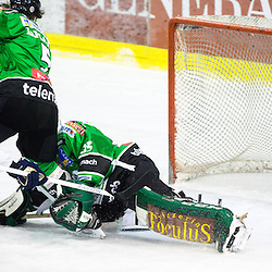 20131230: SLO, Ice Hockey - EBEL League, HDD Telemach Olimpija vs Sapa Fehervar