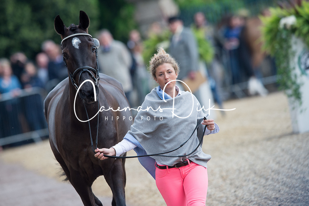 Johnstone Kirsty (GBR) - Opposition Detective<br /> CCI4* - Mitsubishi Motors Badminton Horse Trials 2016<br /> &copy; Hippo Foto - Jon Stroud