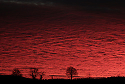 **Image has NOT been digitally manipulated** © London News Pictures. 05/01/2014. Burton, UK. A bright blood red sky at  sunrise over countryside near Burton in Somerset on January 05, 2014. The UK Photo credit : Jason Bryant/LNP