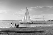 Newport Rhode Island summer scene with sailboats Newport bridge and Rose Island Light lighthouse in black and white