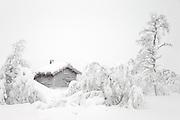 Winterlandscape at Høgåsen, Dagali/Skurdalen, Norway | Vinterlandskap på Høgåsen, Dagali/Skurdalen, Norge