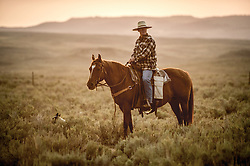 "Will Sparks helps herd cattle during sunset at the J Bar L Ranch, a unique, conservation-friendly ranch nestled into the wide open land of the Centennial Valley in southern Montana. The ranch finishes their cattle on grass, in contrast to the vast majority of ranches in the U.S. that send cattle to feedlots. The 2,000 head at J Bar L ""never go into a feedlot,"" said Bryan Ulring, manager of the ranch. He added that J Bar L is one of the biggest grass finishers in the state. The Centennial Valley is an important wildlife corridor for elk, moose, antelope, deer, wolverines, grizzly bears, wolves and hundreds of bird species. The valley is largely owned by a handful of large ranches, which means their use of the land impacts the local environment. © Ami Vitale"