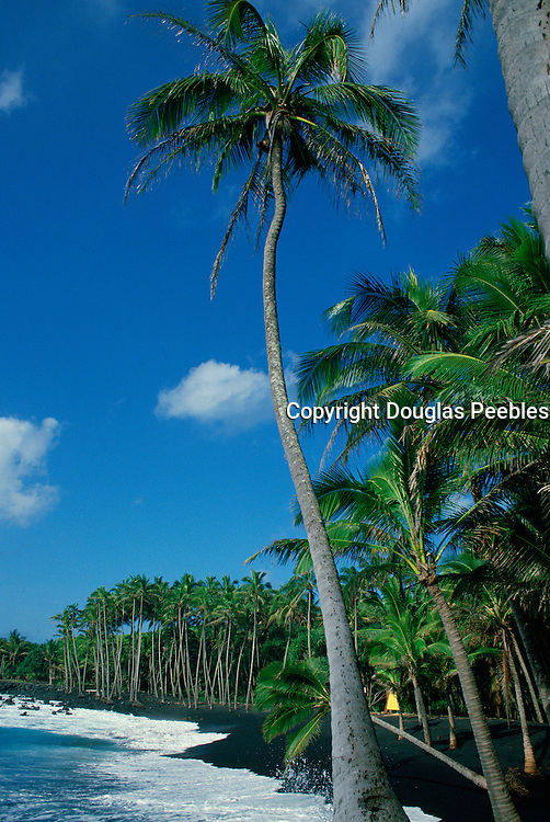 Kalapana Black Sand Beach, Island of Hawaii<br />