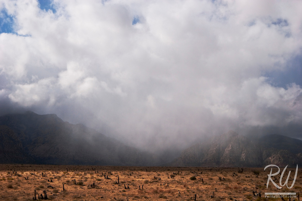 Rain Storm, Red Rock Canyon National Conservation Area, Nevada