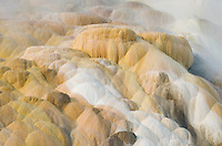 Colorful travertine deposits at Palette Springs of Mammoth Hot Springs Yellowstone National Park