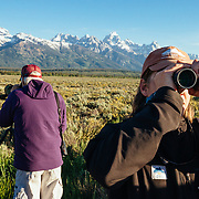 Teten Science Schools tour participants watch a herd of elk forage in the early morning hours. (Dawson & Greg Peck) Tetons in the background.