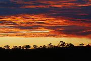 Sky Blanket, Canberra
