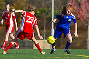 Youth Soccer at Sunrise Valley Sccoer Field in Herndon, Virginia.  November 11, 2012  (Photo by Mark W. Sutton)