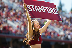PALO ALTO, CA - OCTOBER 06: A Stanford Cardinal cheerleader performs on the sidelines against the Arizona Wildcats during the fourth quarter at Stanford Stadium on October 6, 2012 in Palo Alto, California. The Stanford Cardinal defeated the Arizona Wildcats 54-48 in overtime. (Photo by Jason O. Watson/Getty Images) *** Local Caption ***