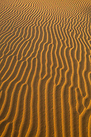 Wind blown sand patterns on the sand dunes of the Thar Desert, Rajasthan, India.