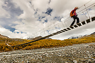 Shaky suspension bridge as hiker crosses over Gulkana River  in Interior Alaska. Autumn. Morning.