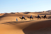 Saharan landscape, Hassilabied village, Southern Morocco, 2016-04-13.<br /><br />Hassilabied village is located on the fringes of the Erg Chebbi dunes, 3km from Merzouga.