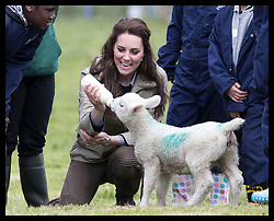 May 3, 2017 - Arlingham, England, United Kingdom - CATHERINE Duchess of Cambridge feeds a thirsty lamb during a visit to a farm run by the charity Farms for City Children in Arlingham, near Gloucester. (Credit Image: © Stephen Lock/i-Images via ZUMA Press)