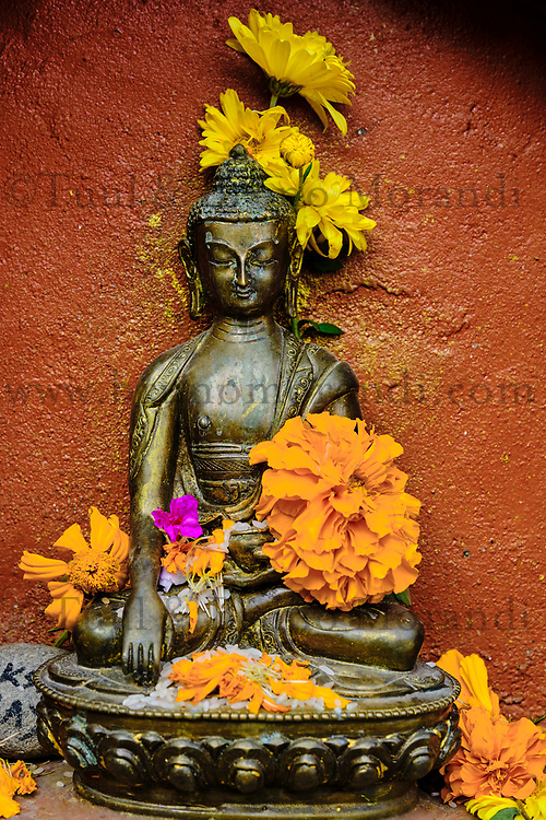 Nepal, Vallee de Kathmandu, Katmandou, village de Bodnath, statue de Boudha // Nepal, Kathmandu valley, Bodnath village, Buddha statue