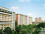HDB (Housing Development Board) apartments at Ang Mo Kio. Approximately 85% of Singaporeans live in HDB flats.