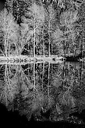 Images from Yosemite National Park for  sale