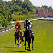 Newmarket 7th June 2013
