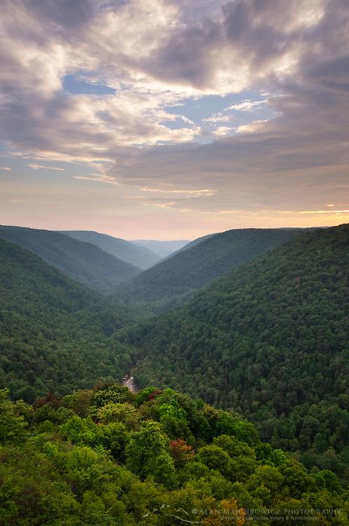 Blackwarter River Valley seen from Lindy Point Overlook. Blackwater falls State Park West Virgina