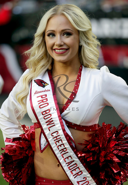 An Arizona Cardinals cheerleader performs during the first half of an NFL football game against the Washington Redskins, Sunday, Dec. 4, 2016, in Glendale, Ariz. (AP Photo/Rick Scuteri)