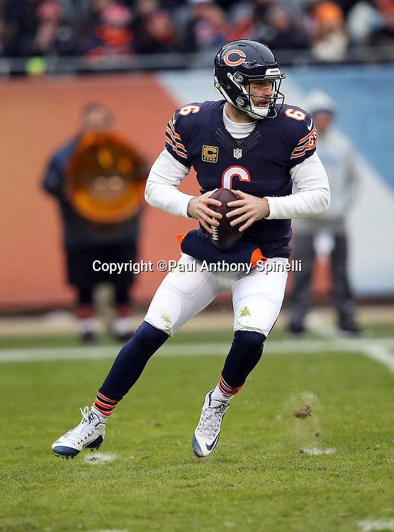 Chicago Bears quarterback Jay Cutler (6) drops back to pass during the NFL week 17 regular season football game against the Detroit Lions on Sunday, Jan. 3, 2016 in Chicago. The Lions won the game 24-20. (©Paul Anthony Spinelli)